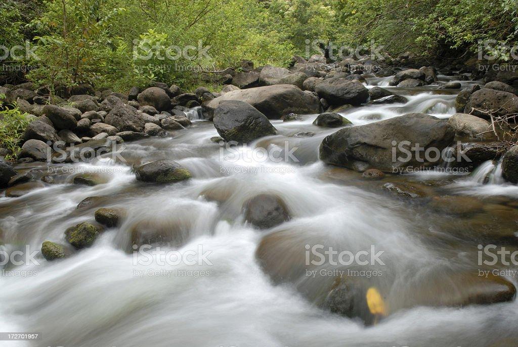 Creek at Iao Valley stock photo