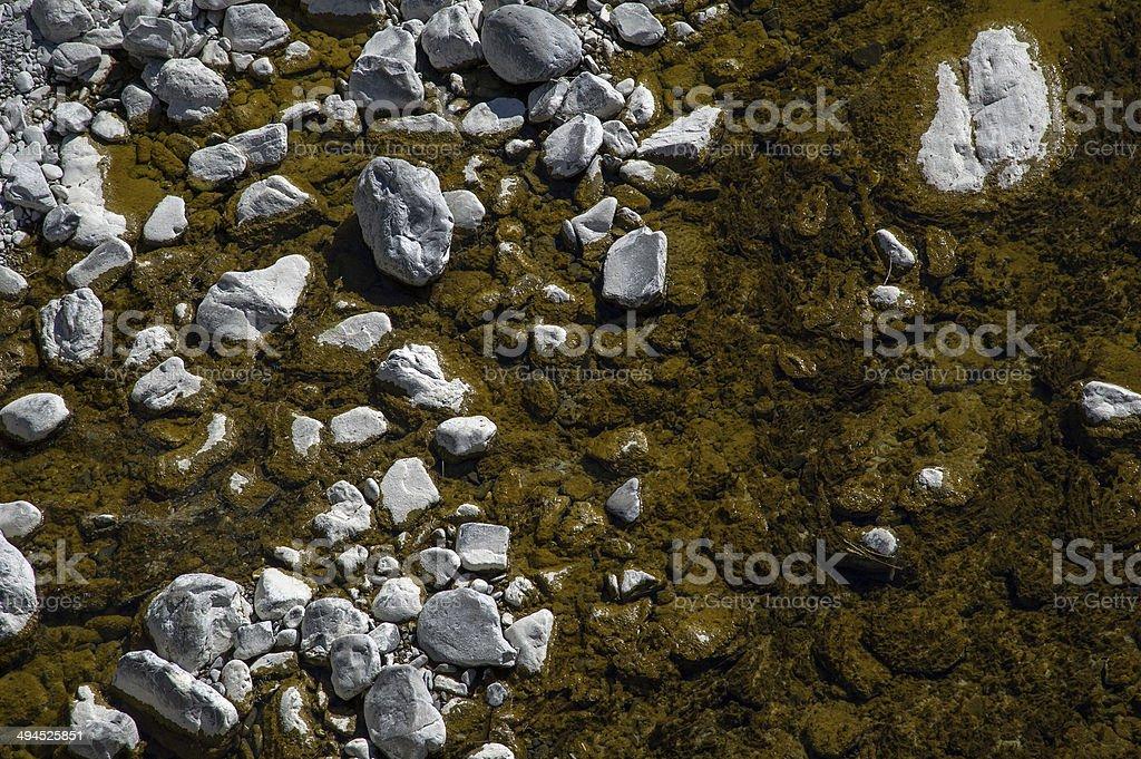 creek bed 免版稅 stock photo