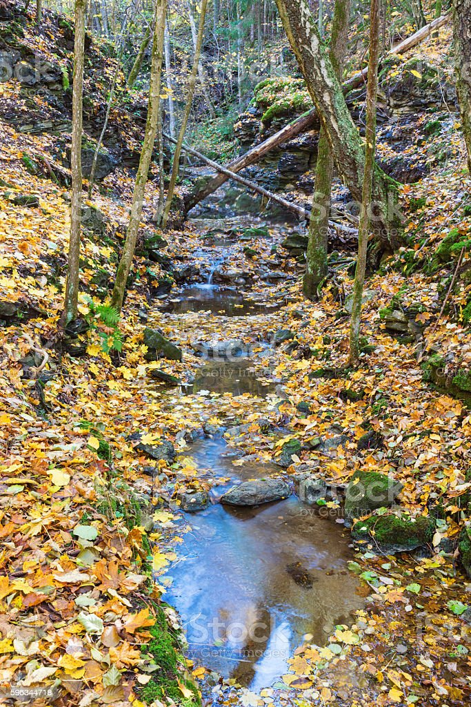 Creek in a ravine royalty-free stock photo