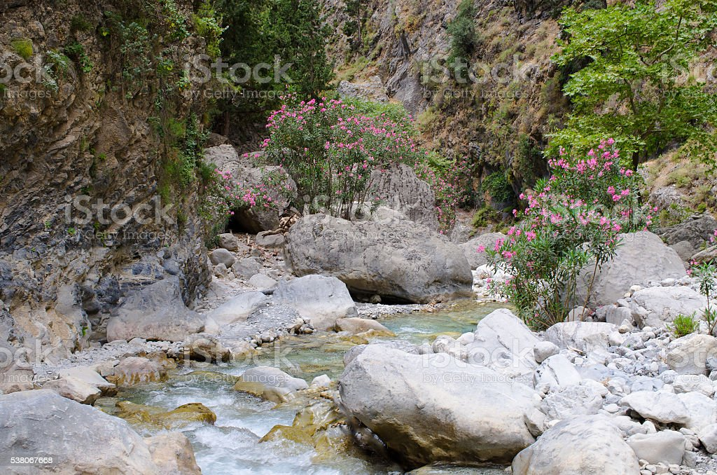 Creek in Samaria Gorge, Crete, Greece stock photo