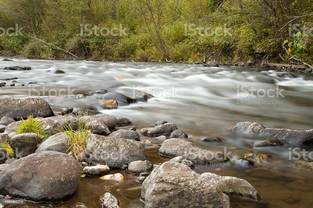 Creek in the woods stock photo