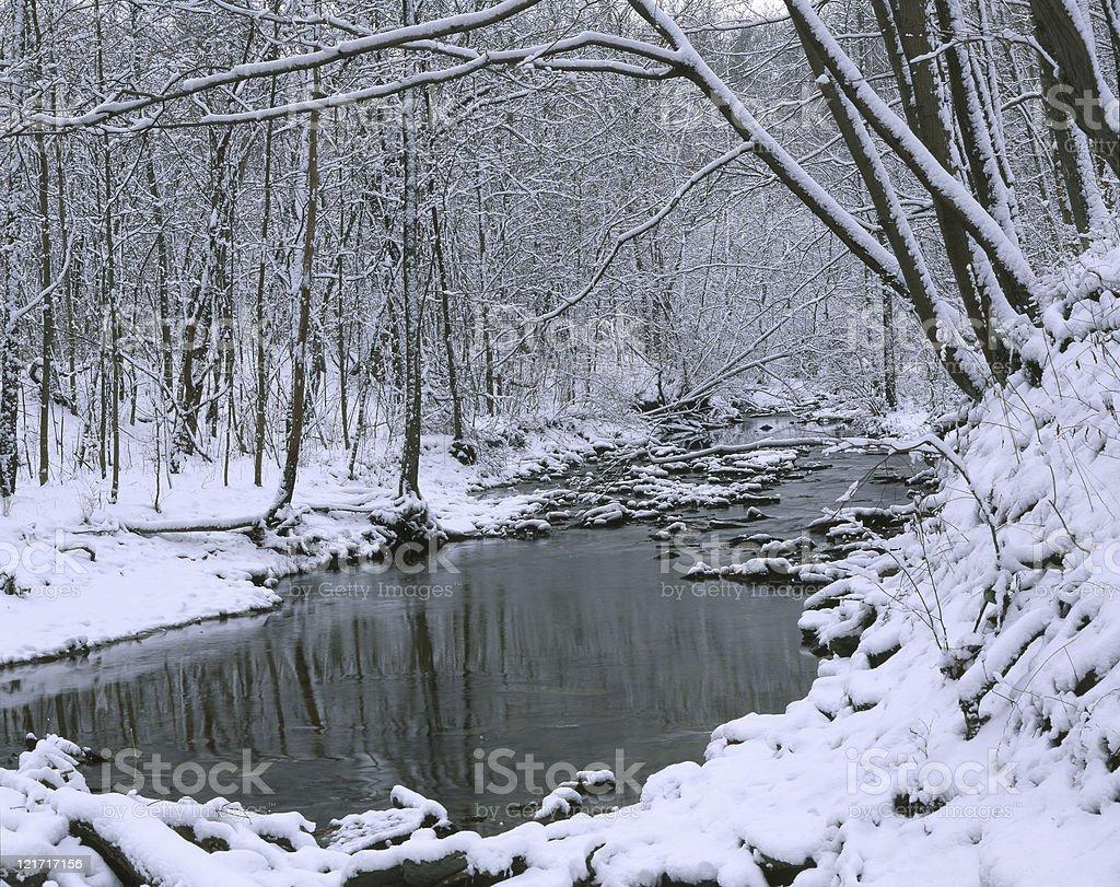 Creek In Winter royalty-free stock photo