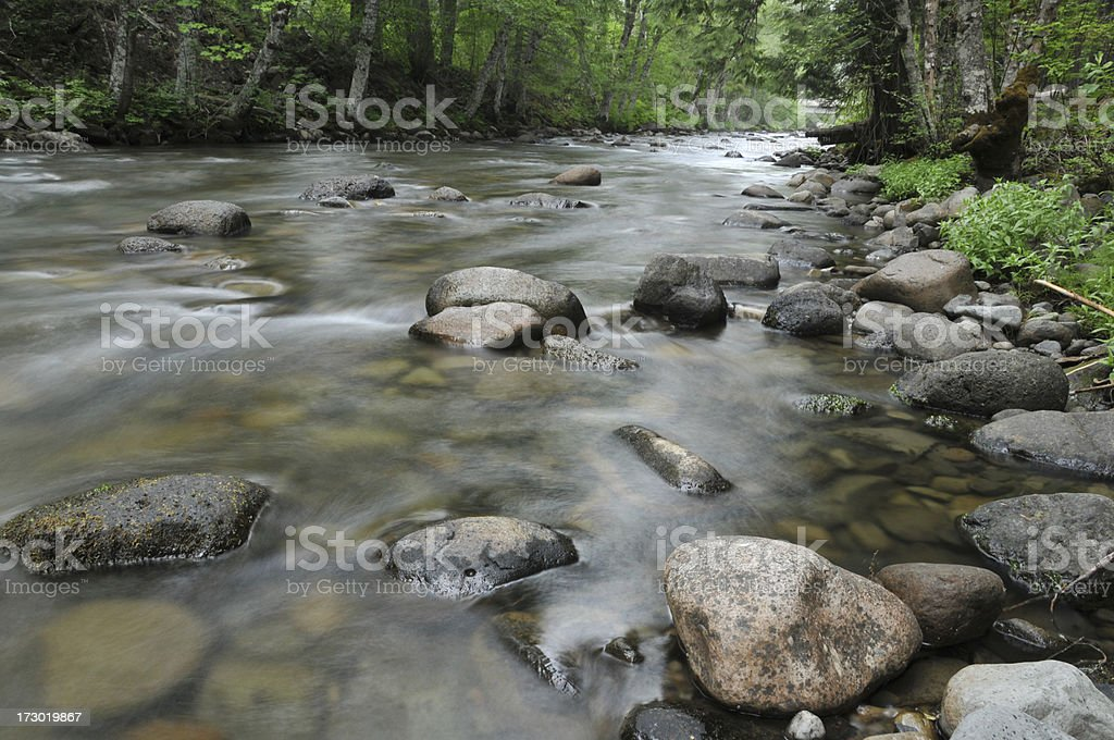 Creek royalty-free stock photo