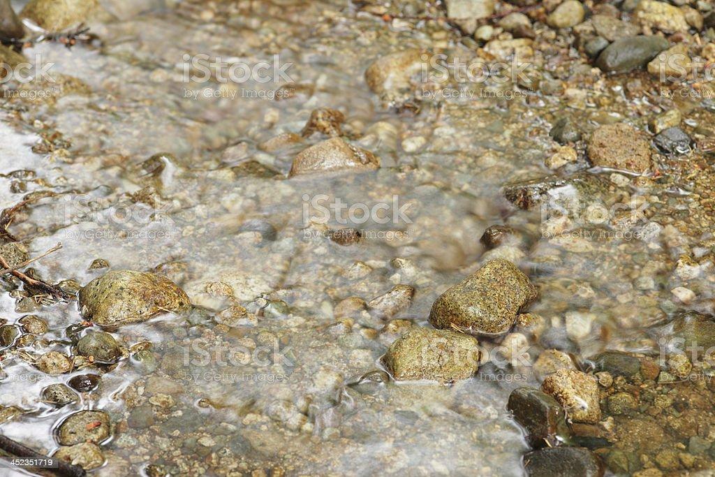 Creek royalty-free stock photo