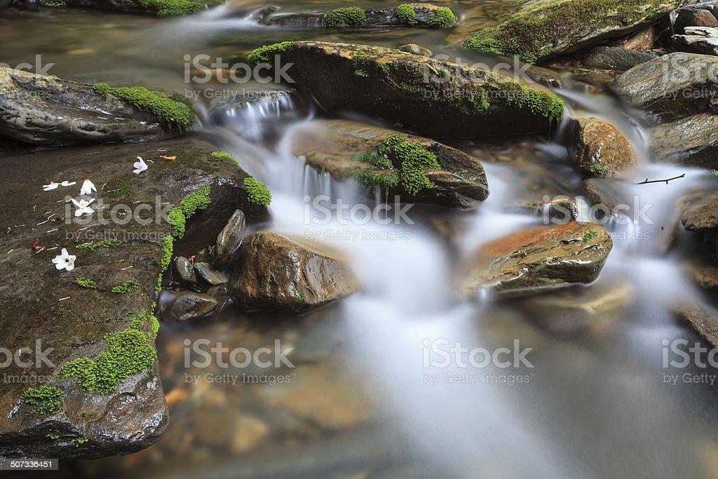 Creek stock photo