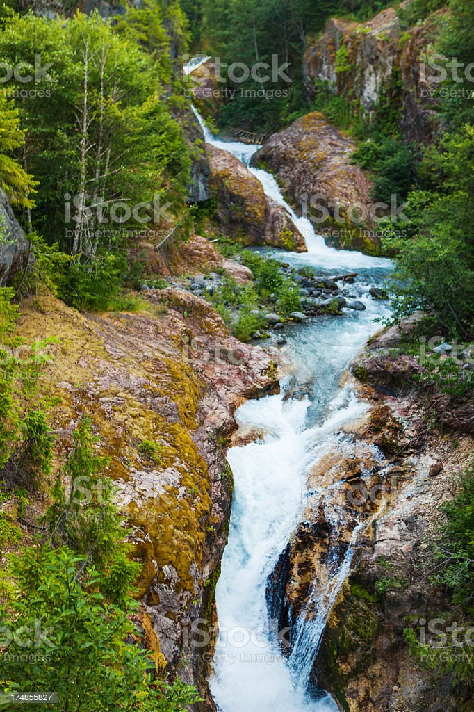 Creek through the forest royalty-free stock photo