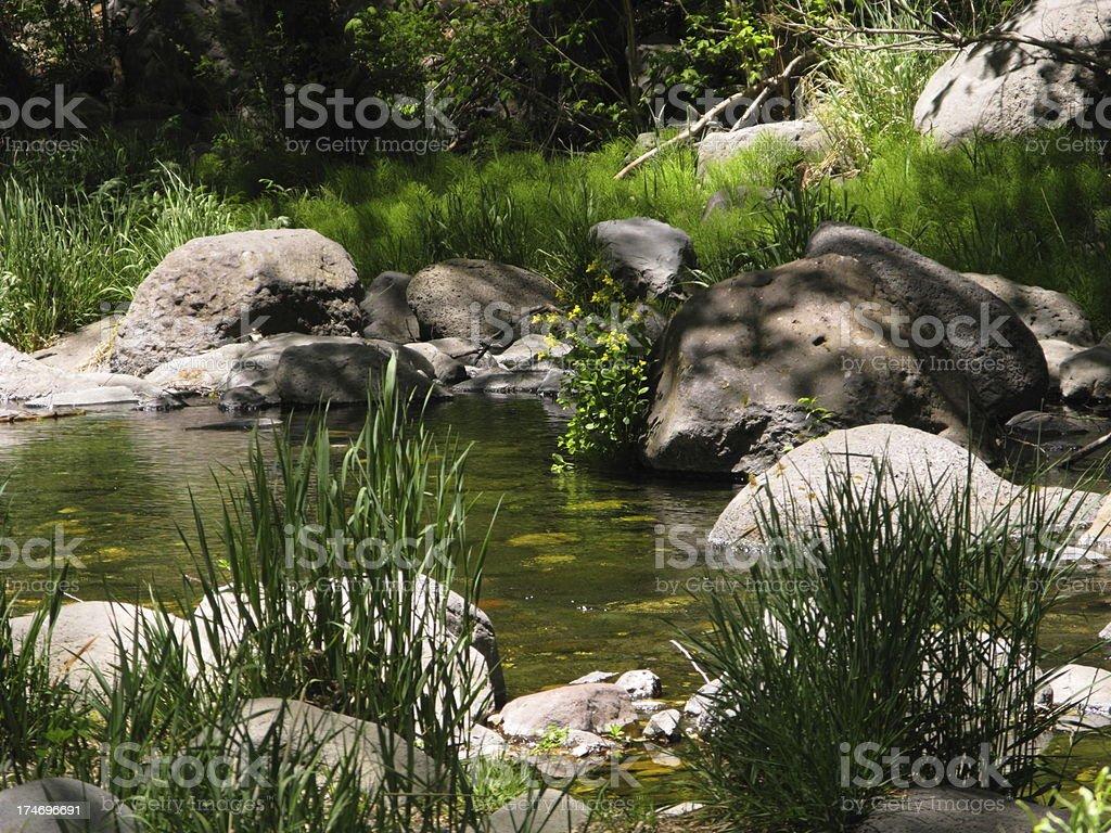 Creek Water Rocks Springtime royalty-free stock photo