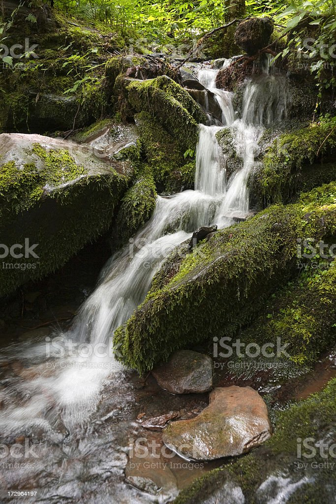 Creek- Waterfall in Great Smoky Mountains National Park royalty-free stock photo