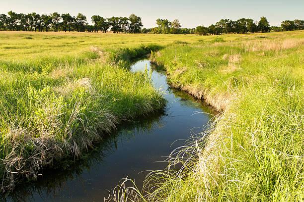 creek sich durch kansas viehweide - bach stock-fotos und bilder