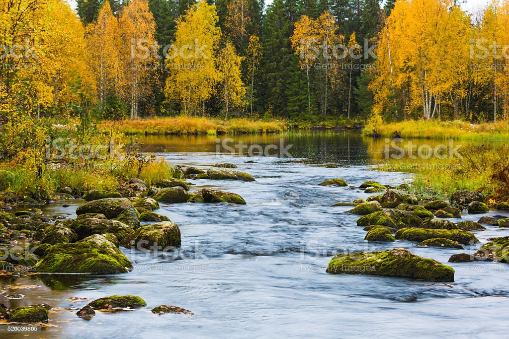 Creek with autumn colors on trees stock photo
