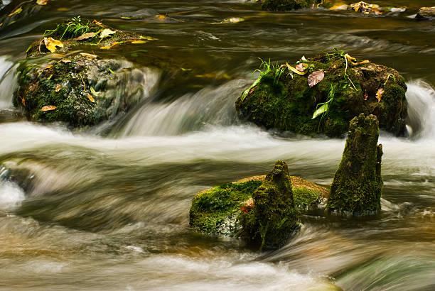 Creek mit mossy Steine in den Herbst – Foto