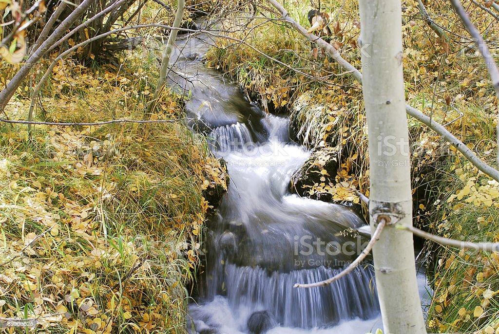 Creek mit kleiner Wasserfall Lizenzfreies stock-foto