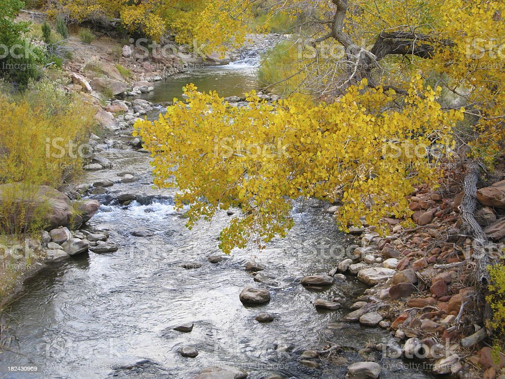 Creek Zion National Park royalty-free stock photo