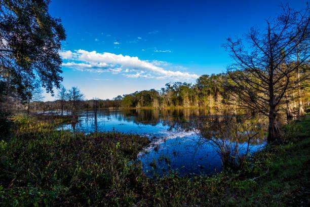 creekfield lake à brazos bend au texas. - lac mirror lake photos et images de collection