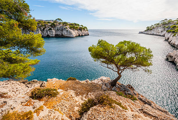 Calanques Calanques, the famous geological formation between Cassis and Marseille  mediterranean coast of France mediterranean sea stock pictures, royalty-free photos & images