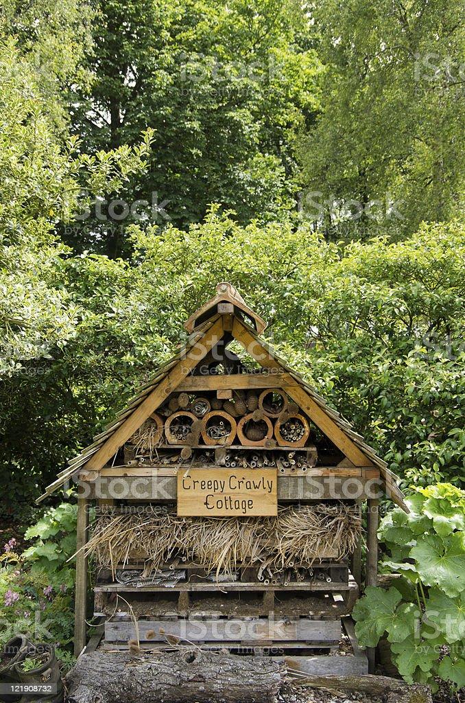 Creepy Crawly Cottage stock photo