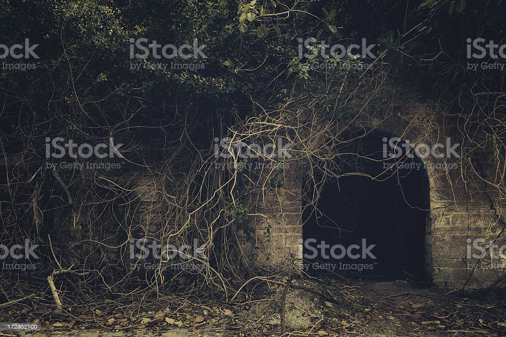 creepy entrance stock photo