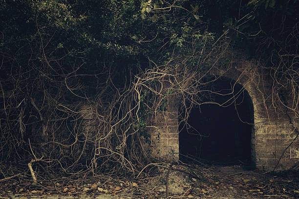 creepy entrance - crypt stock pictures, royalty-free photos & images