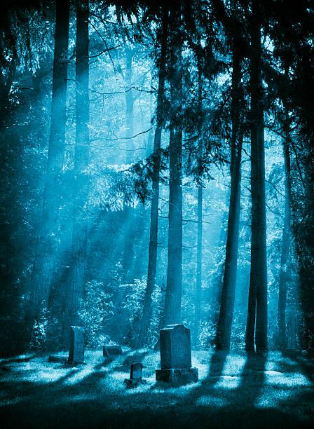 spuk friedhof - waldfriedhof stock-fotos und bilder