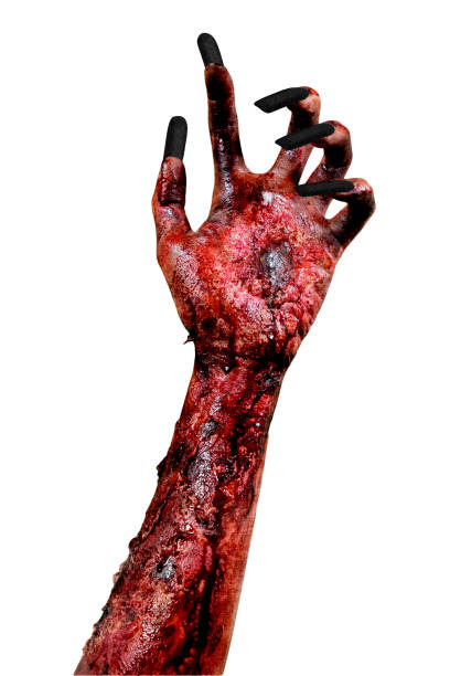 Creepy hand of a female zombie picture id1035618340?b=1&k=6&m=1035618340&s=612x612&w=0&h=0leskfdkw424gm0p6oayhslqtnxmrhc6vlglbl0coao=