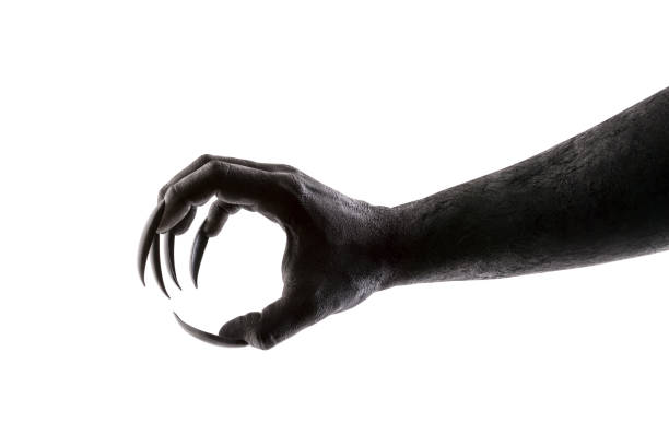 Creepy monster claw isolated on white background with clipping path stock photo