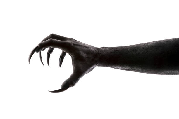 Creepy monster claw isolated on white background with clipping path picture id1148649215?b=1&k=6&m=1148649215&s=612x612&w=0&h=lqbtwclckcddzlqn2vvlw3xthip8sywg3rswqqbag8e=