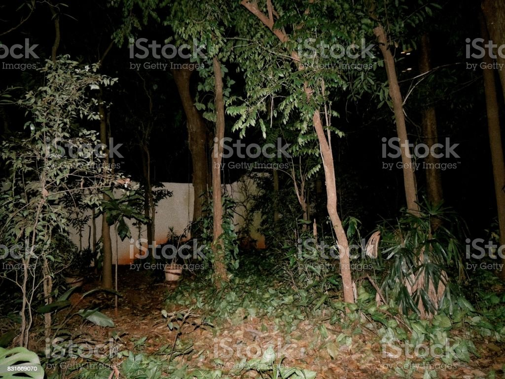 Creepy Party in the Woods stock photo