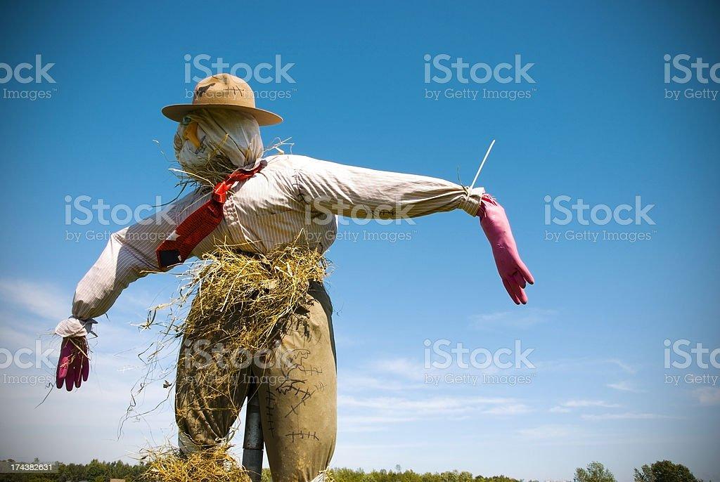 Creepy Scarecrow on Blue Sky stock photo