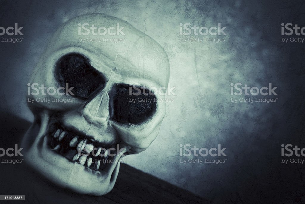 Creepy Skull royalty-free stock photo