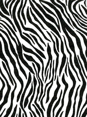 istock Crepe paper made of zebra animal pattern for wallpaper or backgrounds 908730032