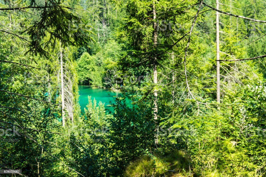 crestasee seen through forest with turquoise water stock photo
