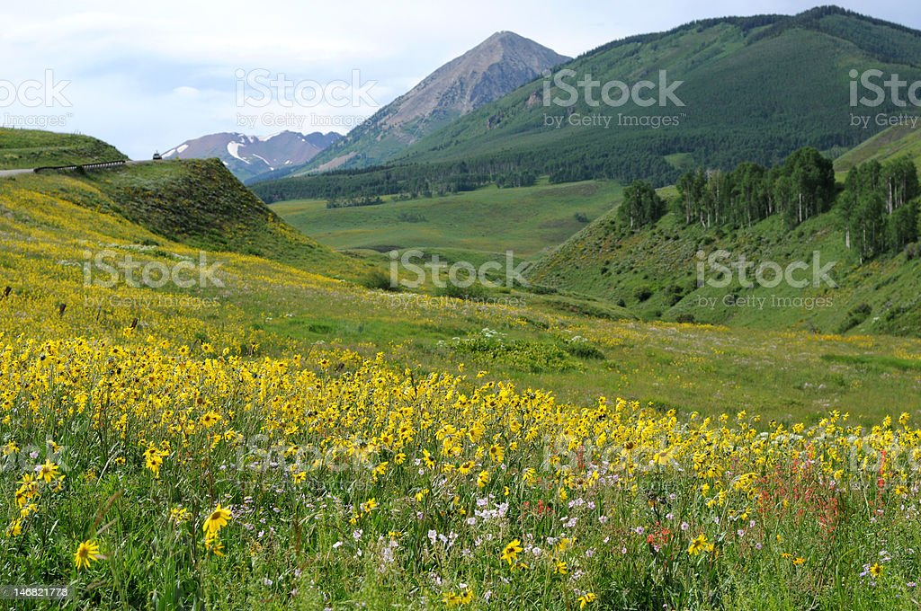 Crested Butte, Colorado royalty-free stock photo