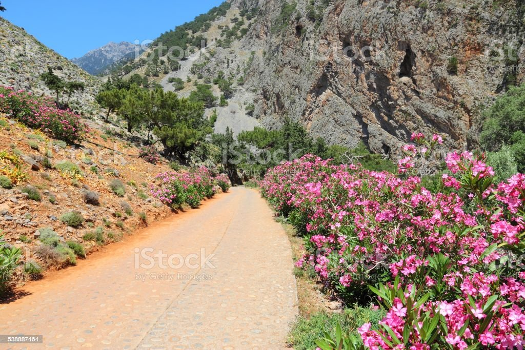 Crete landscape stock photo