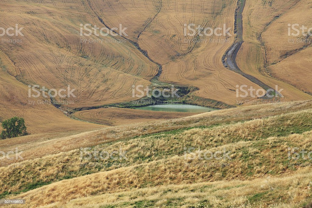 Crete senesi, hills close up in Val D'Orcia, Tuscany. stock photo