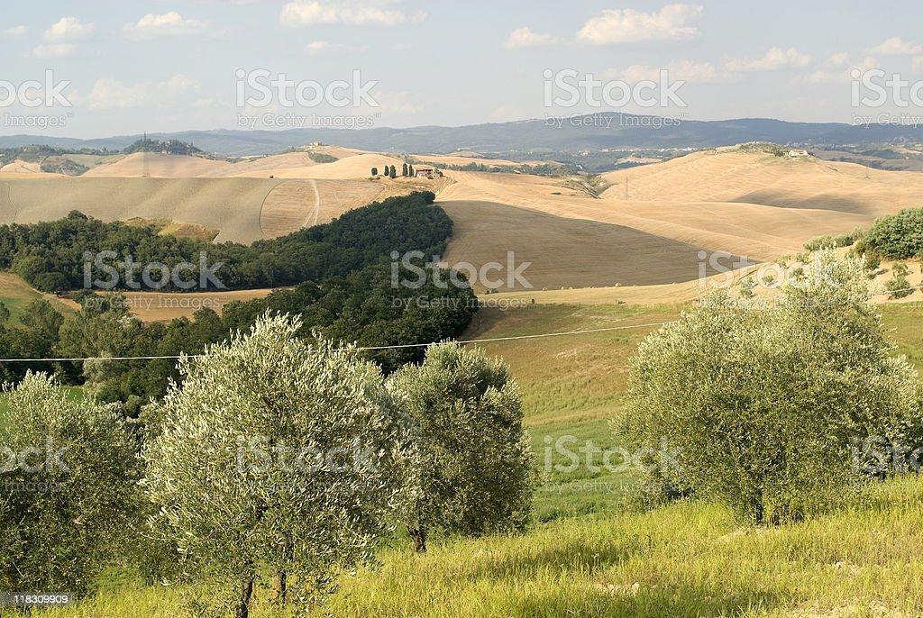 Crete senesi, landscape in Val d'Orcia (Siena, Tuscany) royalty-free stock photo