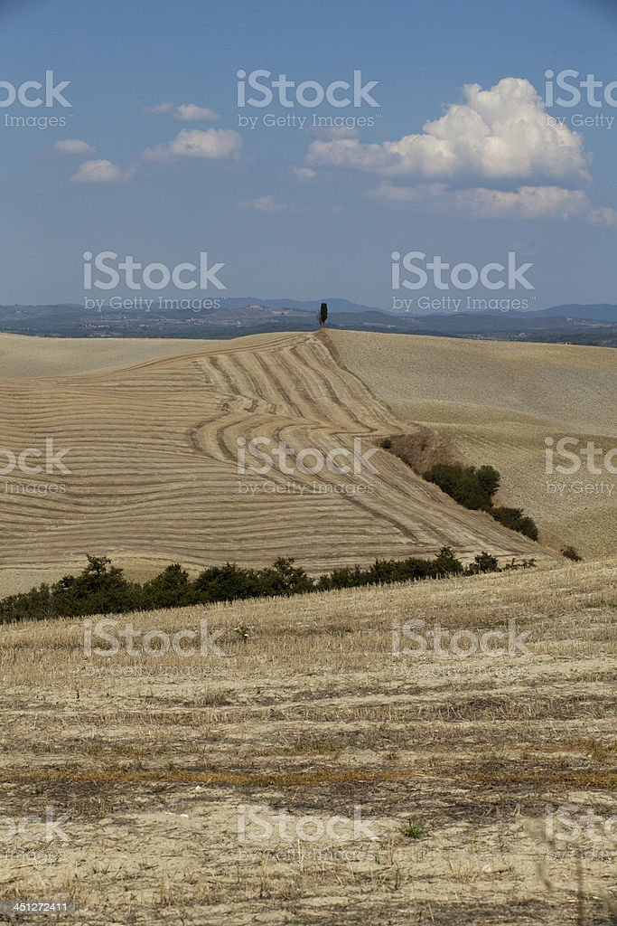 Crete Senesi -  landscape of the  Tuscany royalty-free stock photo