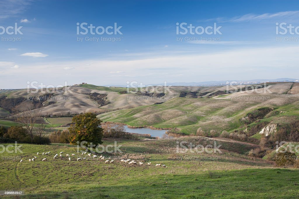 Crete Senesi stock photo