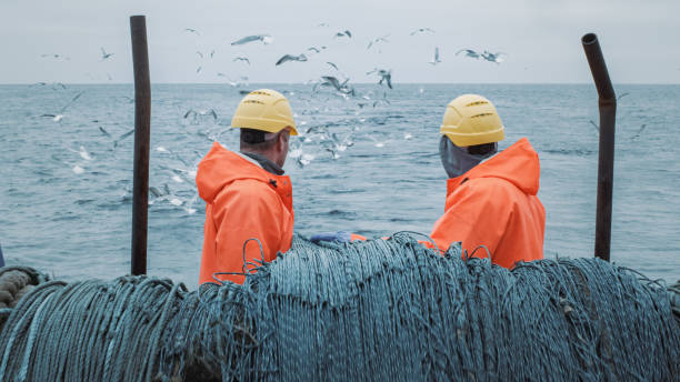 Crew of Fishermen Work on Commercial Fishing Ship that Pulls Trawl Net. Crew of Fishermen Work on Commercial Fishing Ship that Pulls Trawl Net. fishing boat stock pictures, royalty-free photos & images