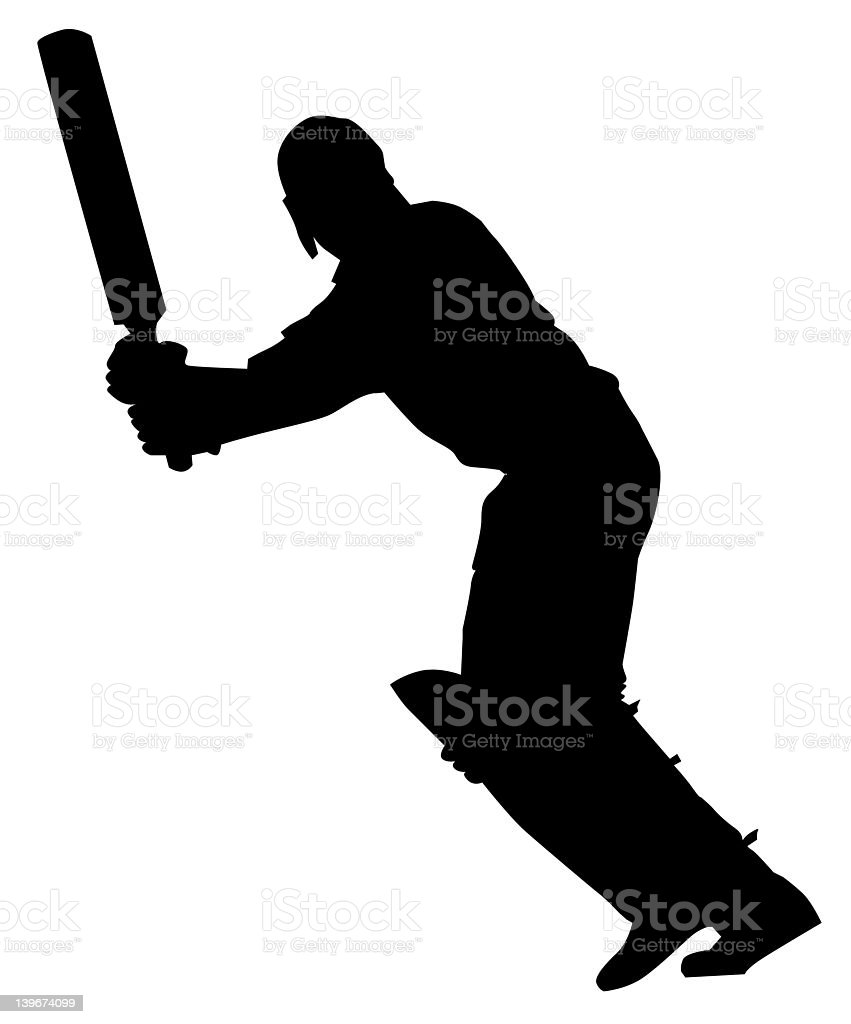 Cricket 3 royalty-free stock photo