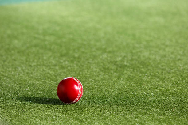Cricket Ball and Artificial Turf stock photo