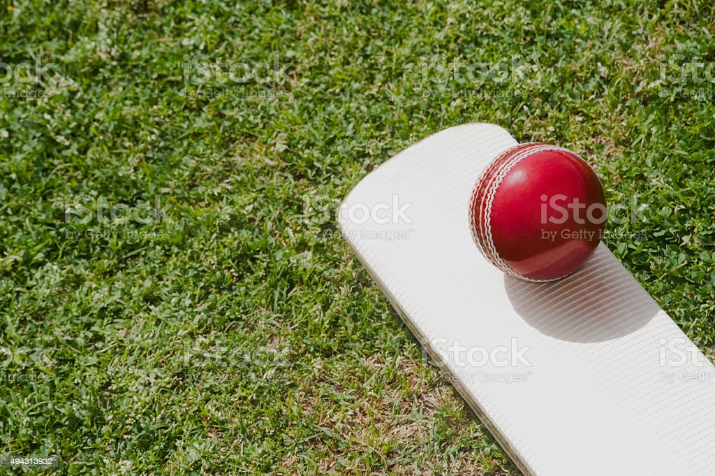 Cricket ball on a cricket bat in a field stock photo