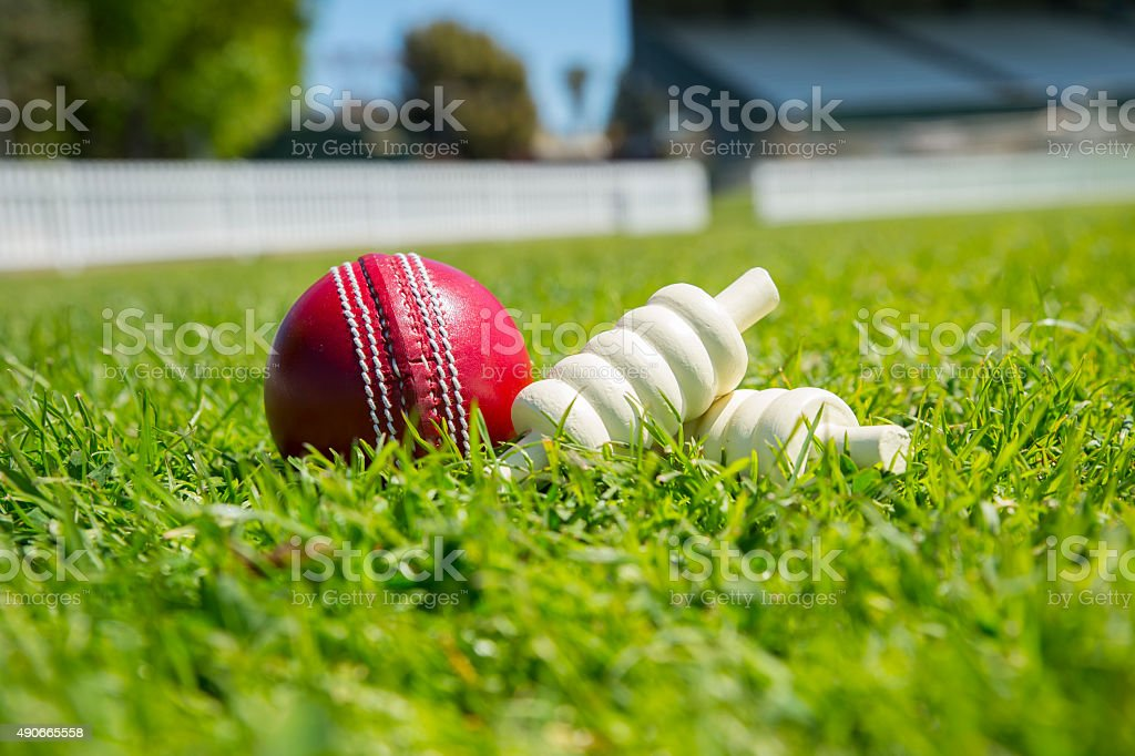 Cricket ball – Foto