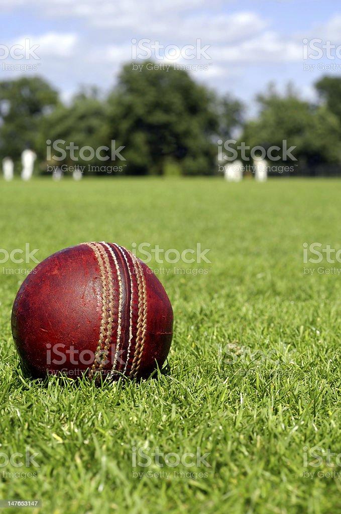 Cricket Ball & Players royalty-free stock photo
