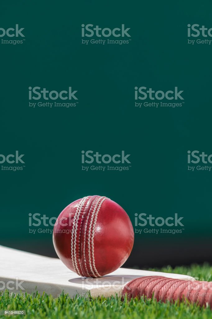 A Cricket ball sitting on a bat in the grass stock photo