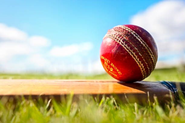 Cricket bat and red leather ball background stock photo