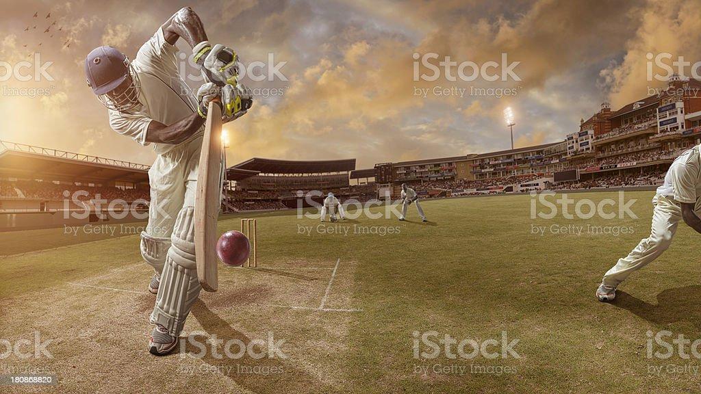 Cricket Batsman About to Strike Ball royalty-free stock photo