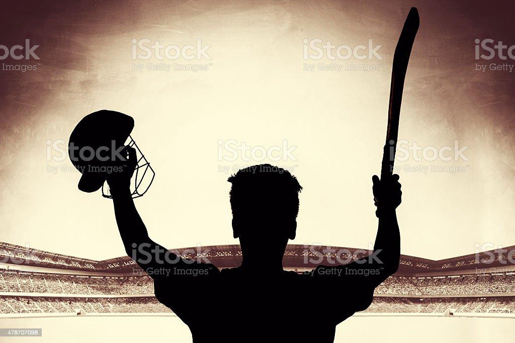 Cricket century stock photo