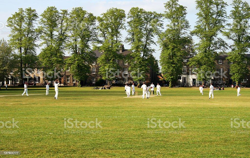 Cricket game royalty-free stock photo