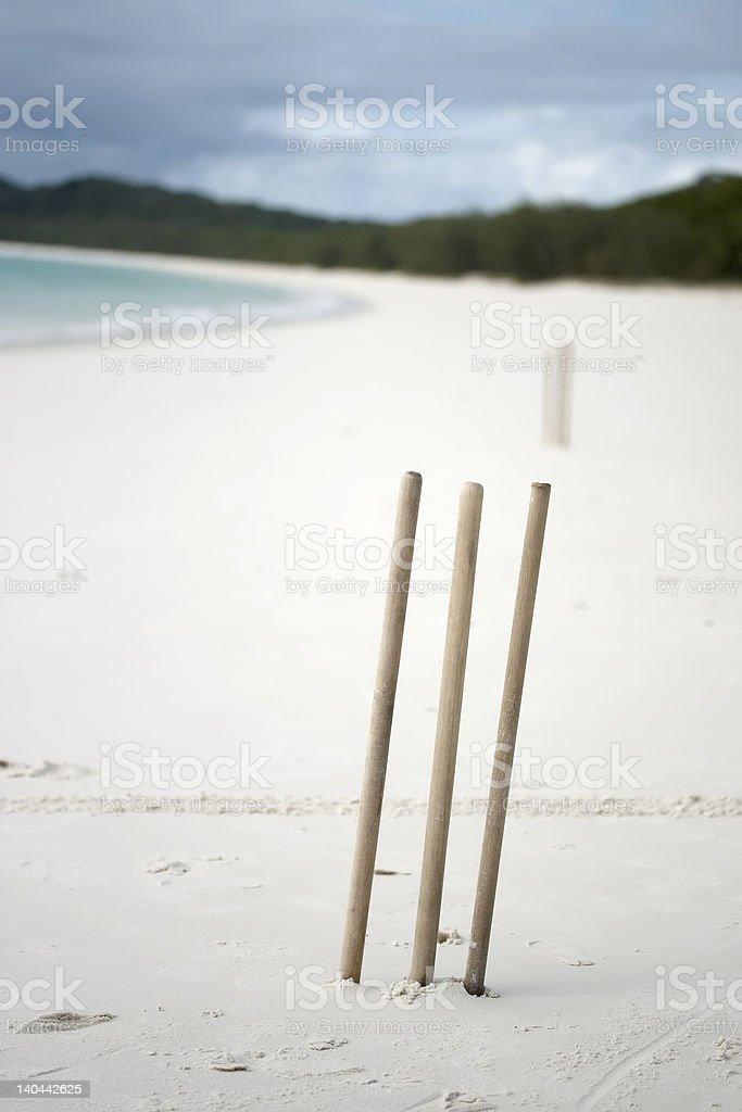 Cricket on a Deserted Beach stock photo