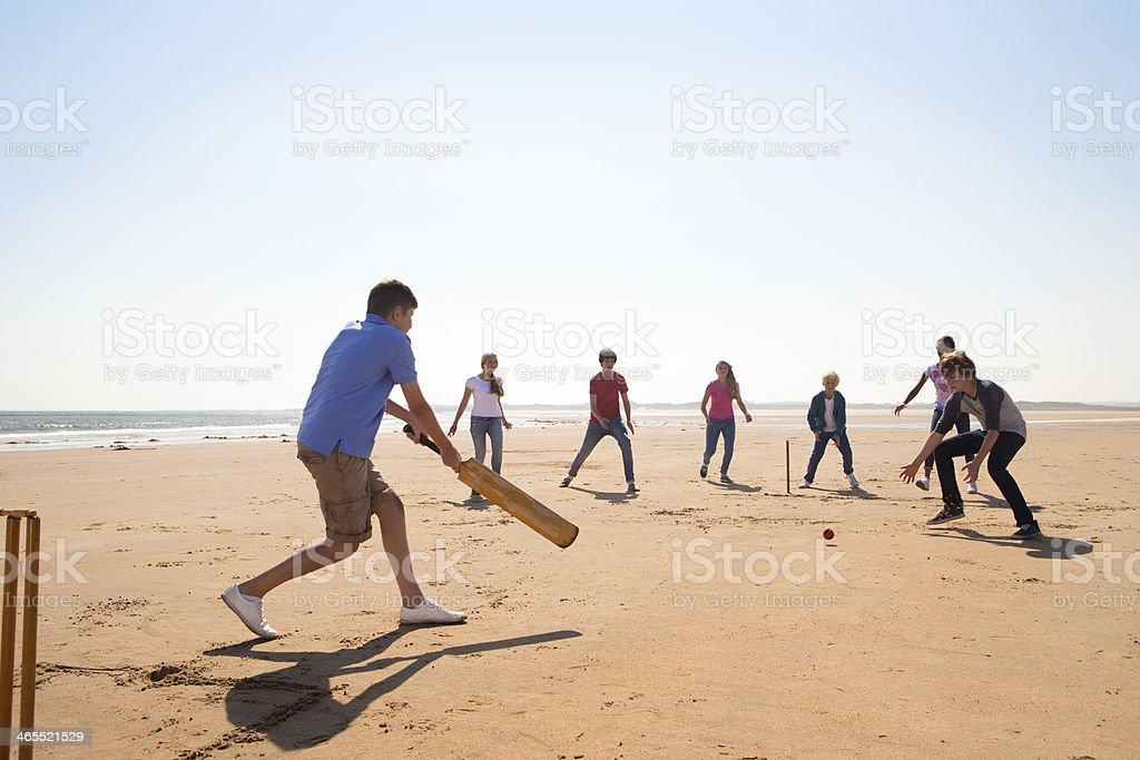 Cricket On The Beach stock photo